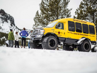 Guests visiting Yellowstone NP in the winter.